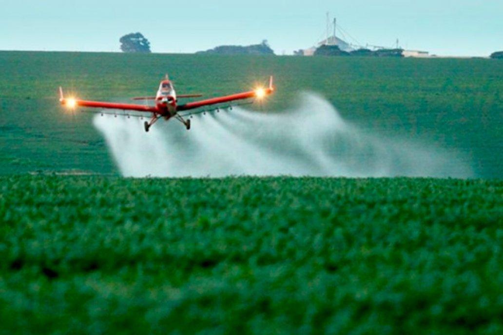 Pulverizaciones: se denegó recurso extraordinario a amparo del Foro Ecologista