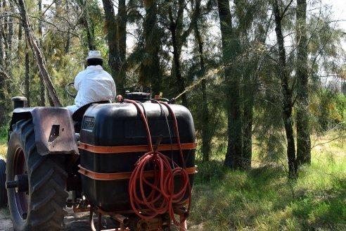 Son 467 los productores citrícolas que recibieron el cebo que controla la propagación de la Mosca de los Frutos