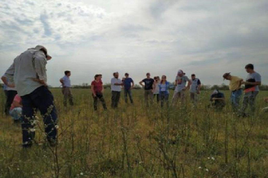 Ganadería y conservación en los humedales del delta entrerriano