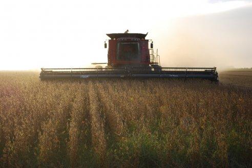 Recomendaciones para la cosecha de granos durante la emergencia sanitaria