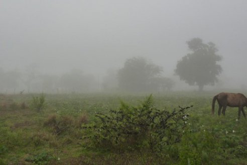 Datos de la lluvia: para el SMN lo mejor aún está por venir