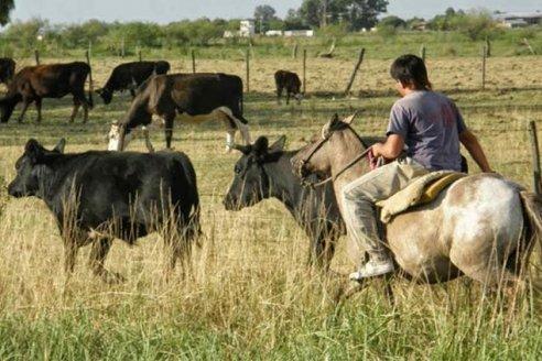 Las nueve medidas que propone CRA para paliar la crisis y proteger los empleos en el agro