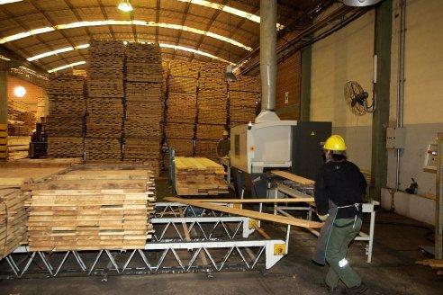"""""""La industria de la madera es una familia muy gigante que cuando funciona es un reloj"""""""