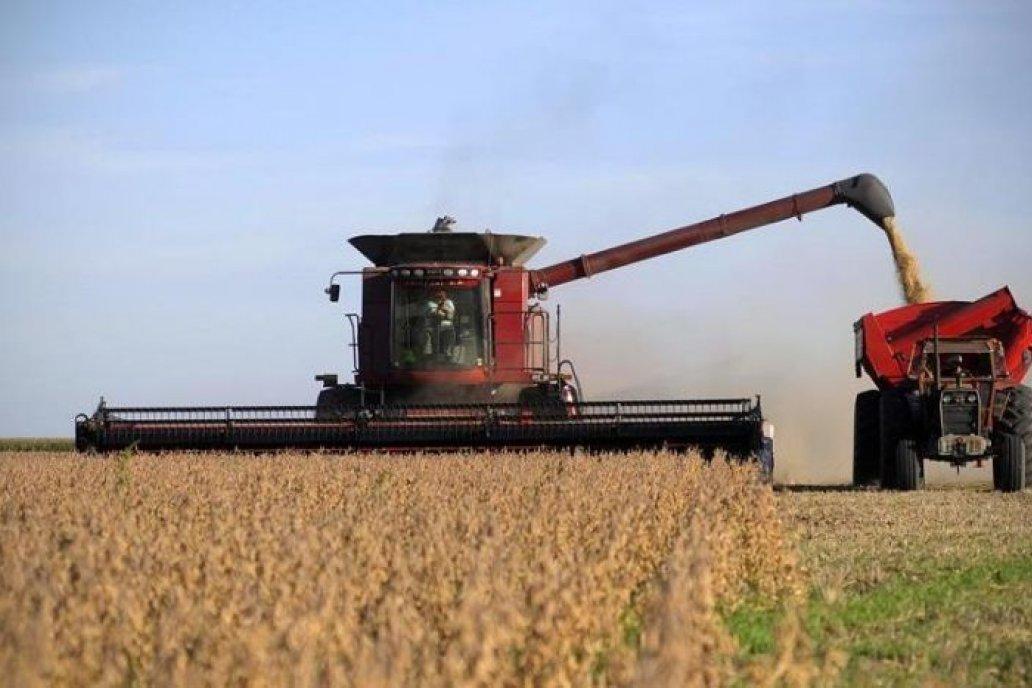 En Entre Ríos, la producción de soja cayó un 22 %