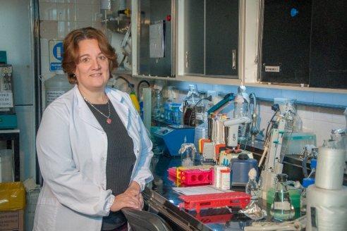 Investigadores del INTA avanzan en la obtención de anticuerpos de animales contra el Covid-19