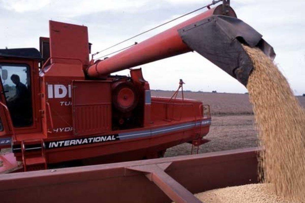 En Entre Ríos, se estima una producción de 1.755.600 toneladas soja de primera