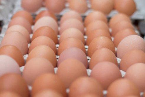 Por qué la docena de huevos registró aumentos de hasta 100% durante la cuarentena