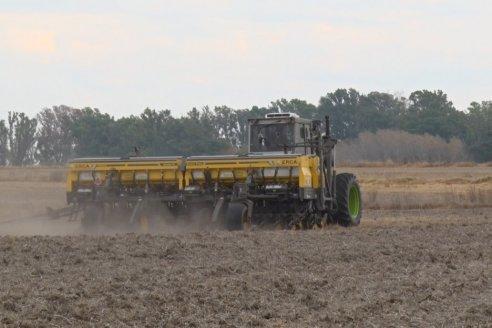 Por la intervención del mercado de cambios para importaciones se suspendió la venta de fertilizantes y fitosanitarios en plena siembra de trigo