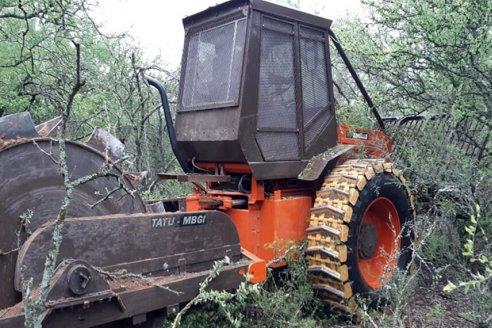 Desarrollan un rolo autopropulsado para realizar una ganadería sustentable en bosques nativos