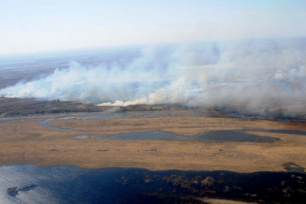 Identificaron a dos rosarinos que incendiaban pastizales en islas entrerrianas