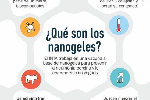 Utilizan nanobiotecnología para el desarrollo de vacunas