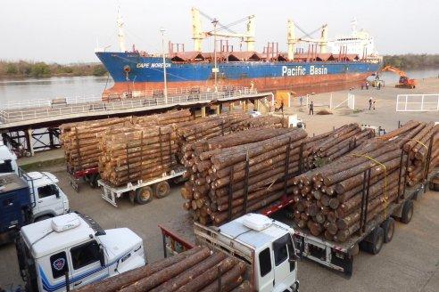 Entre Ríos comenzará a exportar madera a granel a la India y tablas a China