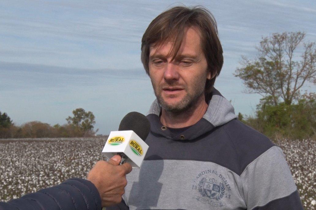 """Algodón en Seguí: """"Es un desafío y pude demostrar que funciona"""""""