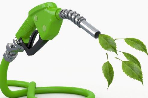 Quieren renovar la ley de biocombustibles