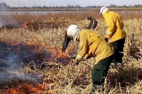 El gobierno entrerriano continúa trabajando en la zona de islas y tras los responsables de las quemas sin autorización