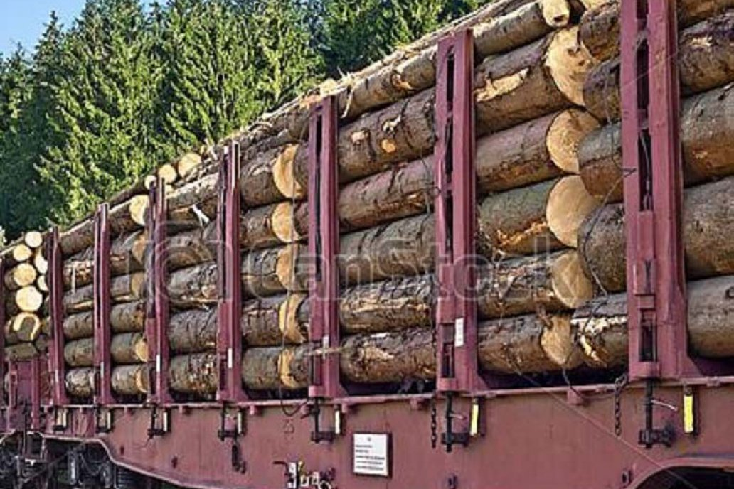 """Schepens: """"La reactivación de ramal ferroviario es clave para puertos entrerrian"""