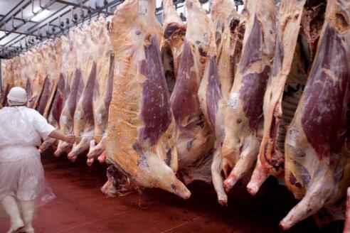 El USDA proyecta una caída en la producción de carne vacuna argentina