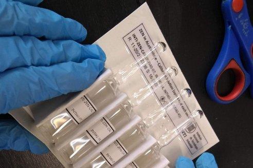 Desarrollan un medidor de micotoxinas nacional y económico para maíz y trigo