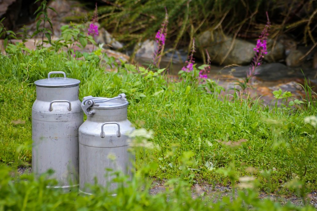 Bioter, presentó RUMET, suplemento nutricional que aumenta producción de leche