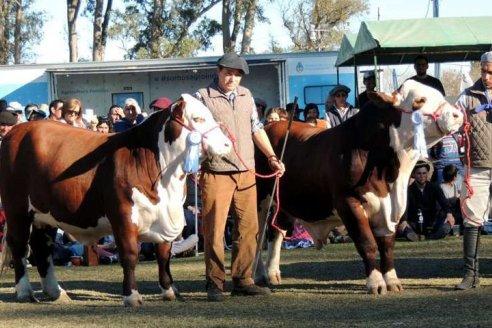 En Villaguay arrancan las exposiciones ganaderas entrerrianas