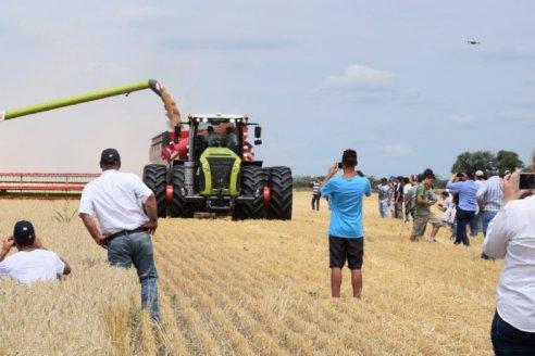 La fábricas de maquinaria agrícola trabajan al 100% de su capacidad