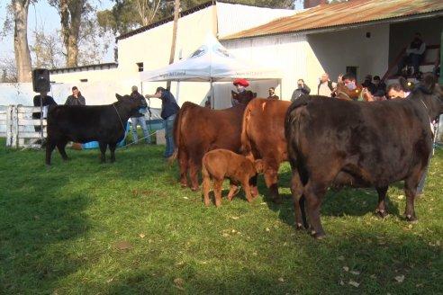 Especial Reproductores Sociedad Rural Villaguay 2020