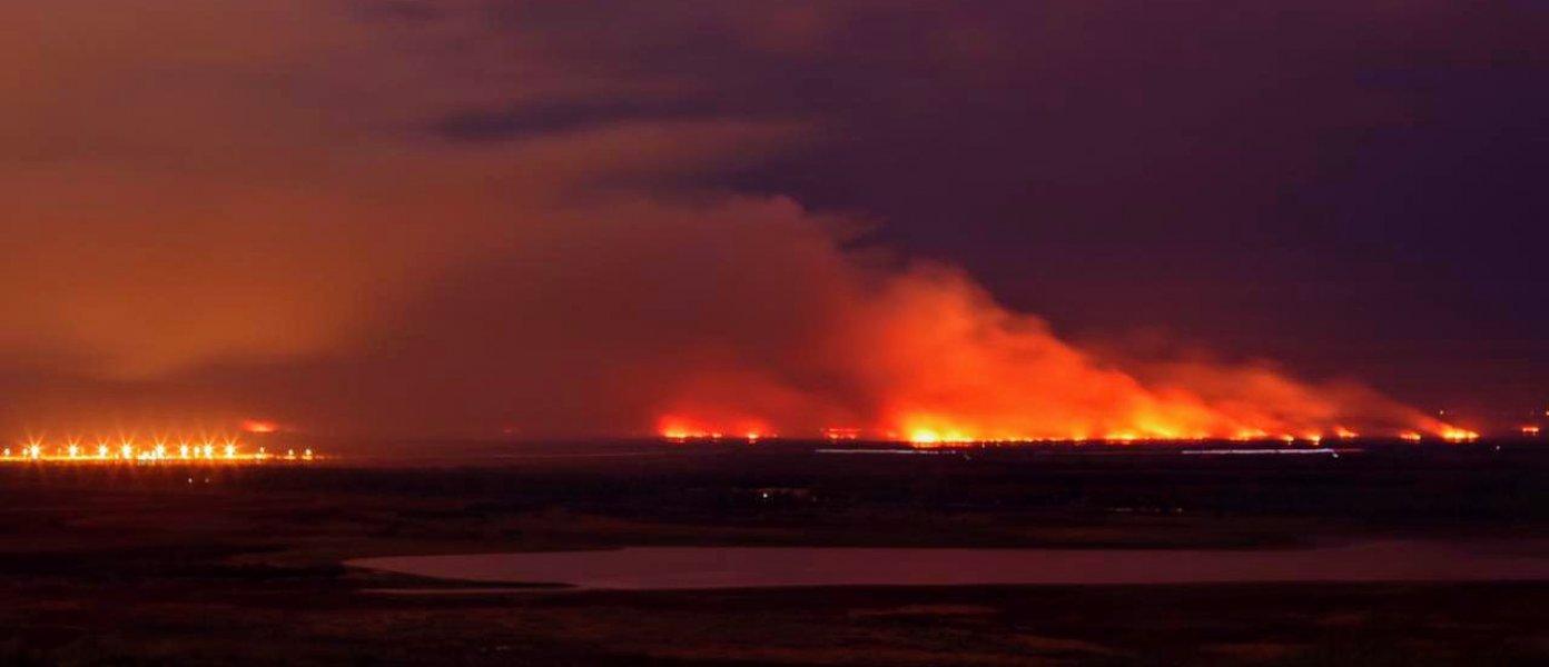 Incendios en islas: Experto dice que hay que convivir con el flagelo del fuego