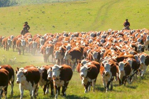 Mejoró la competitividad de los productos agropecuarios argentinos en el mundo