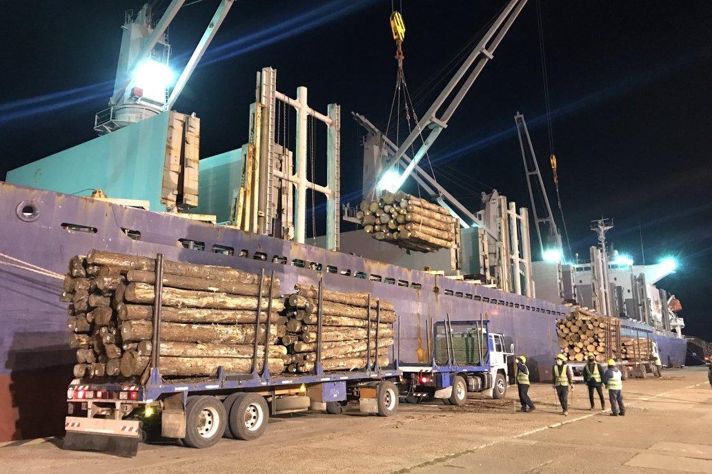 Impacto local. De Entre Ríos no cesan de partir barcos con madera rumbo a China.