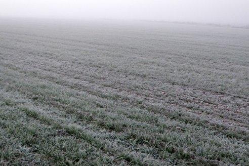 Sequía: ¿cómo y cuándo podría acabarse?