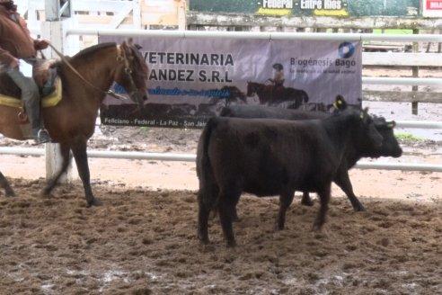 Se realizó el 6to Remate Anual Cabaña Bototí Picú - Soc.Rural Federal - Septiembre 2020