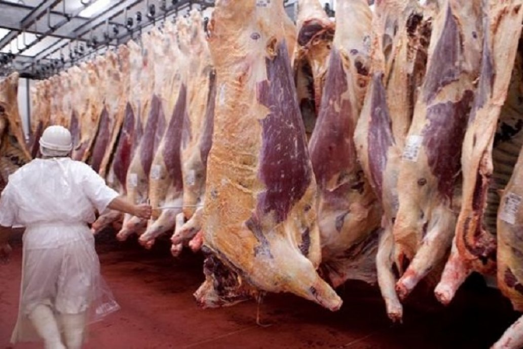 Ucrania vuelve a comprar carne argentina luego de dos años