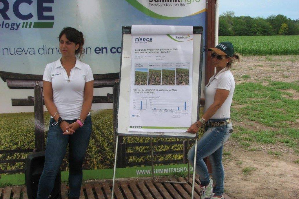 Eficiencia en maíz y soja para el control de malezas difíciles