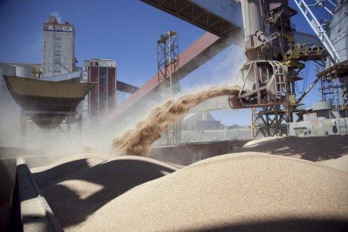 El Gobierno analiza cambios para que el agro liquide cosecha