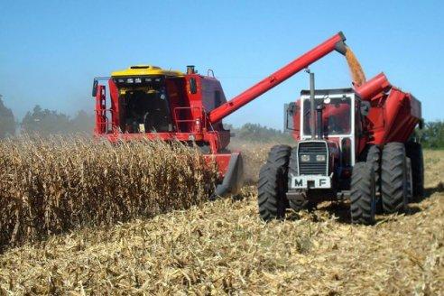 La Bolsa porteña proyecta otra campaña en que se producirá más maíz que soja
