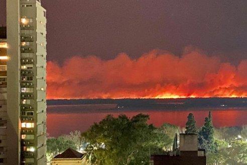 Por incendios en el Delta, ambientalistas reclaman indemnización de $150 millones a productores