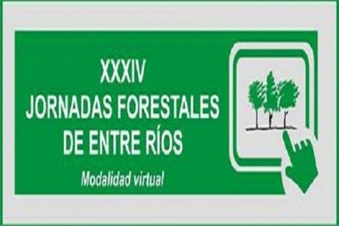 Se preparan las XXXIV Jornadas forestales de Entre Ríos