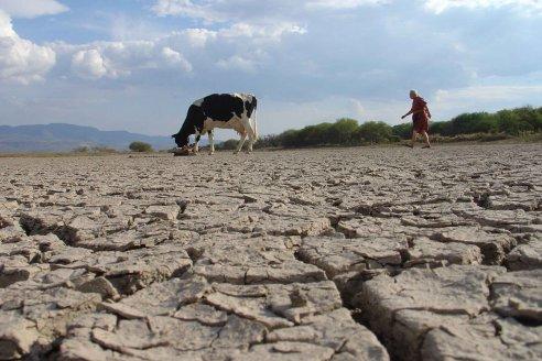Por la sequía y los incendios, Chaco declaró la emergencia agropecuaria