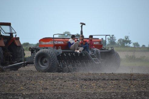 Andres Fink - Productor Agrícola  - Colonia Jorge Fink en Distrito Chañar Dpto Federal - Siembra de Arroz