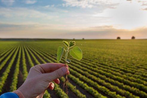 Verdesian Preside: un tratamiento de semillas único en la Argentina.