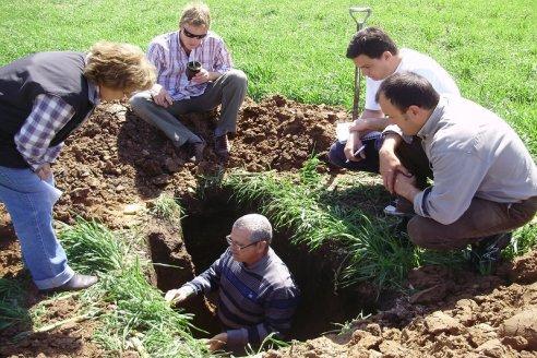 La microbiología del suelo revoluciona la producción agropecuaria