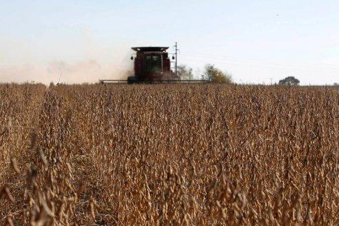 La ganancia del sembrador está en la trilla precisa y efectiva