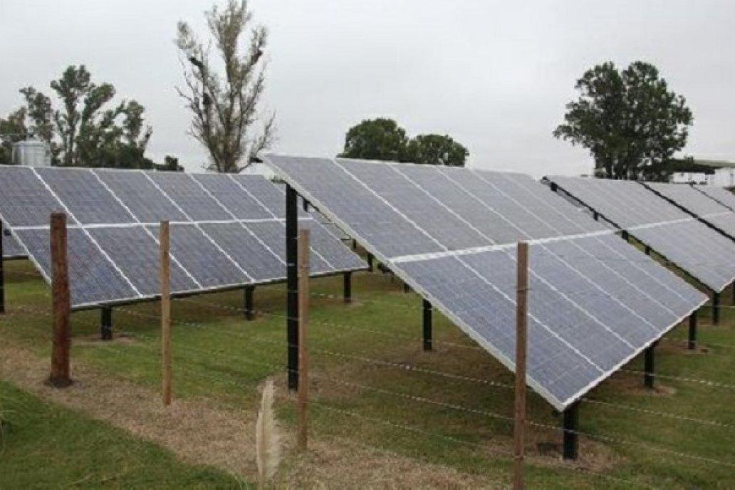 Productores presentaron más de 1.000 proyectos de inversión en energías renovabl
