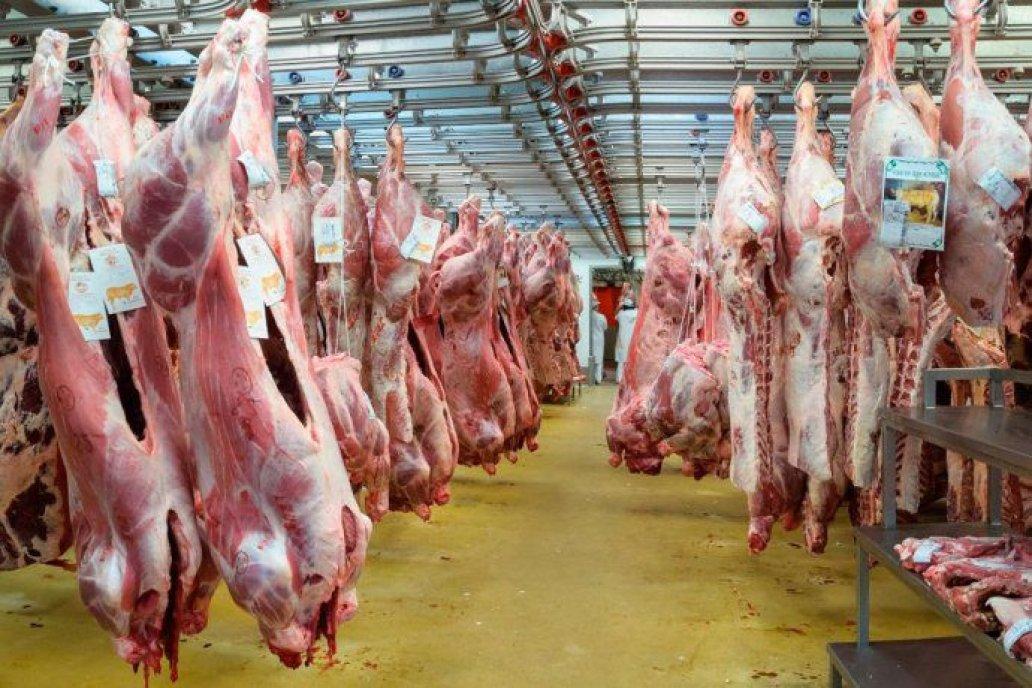 Argentina exportó unas 72,6 mil toneladas en junio
