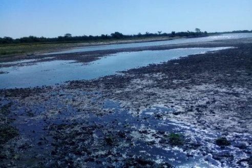 Denunciaron la construcción de terraplenes ilegales en el río Guayquiraró
