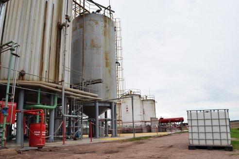 """Fabricantes de biodiesel aseguran que """"el sector se está muriendo"""""""