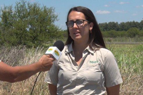 Cultivos de Verano: Soja en Maria Grande - Hugo De Angeli (Productor) y Natalia Bione (Daser Agro)