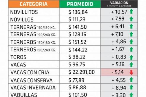 Subas por encima del 5% en el precio de los vacunos entrerrianos