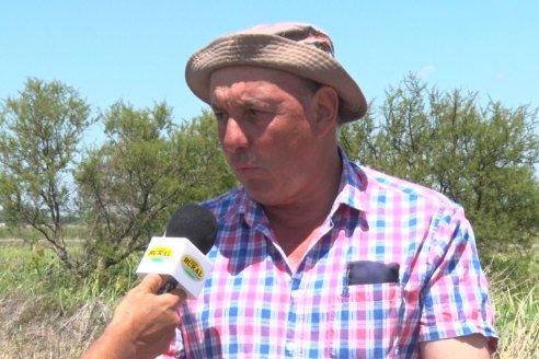 Con granizo y todo, Hugo De Angeli saca pecho con su soja