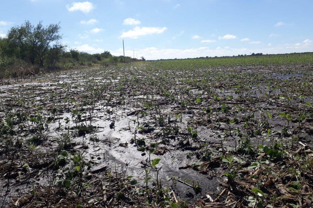 Los anegamientos de hoy son las reservas de humedad para maíz y soja.